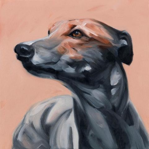 Pink Greyhound. Oil on canvas. 30 x 30 cm. 2016